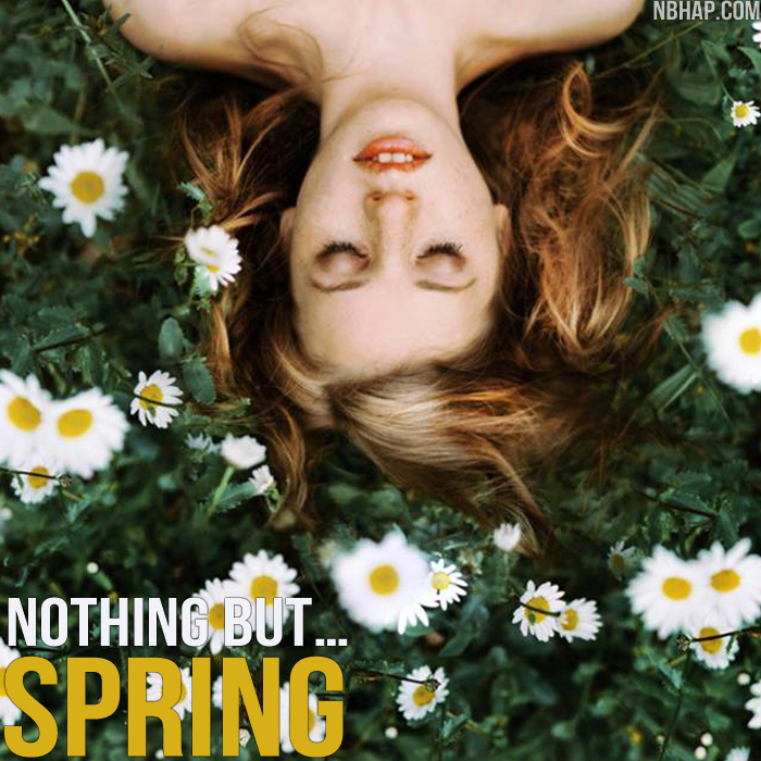 Nothing But Spring Cover - Artwork by Laura Zalenga