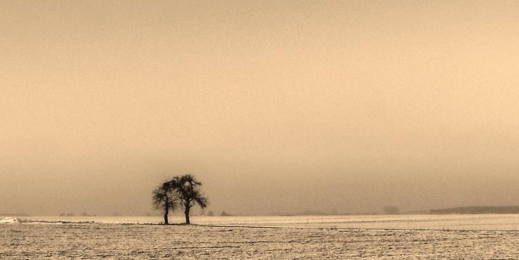Melancholia - Photo by Haakon von Martinsky