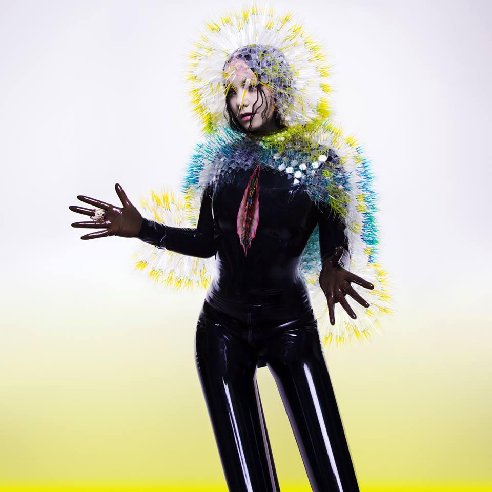 Björk – 'Vulnicura' - Cover