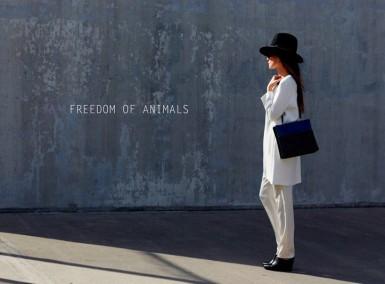 Freedom of Animals