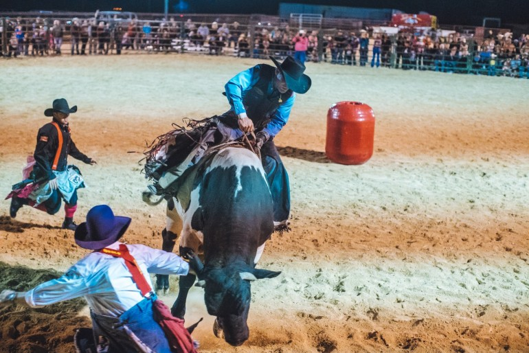 Rodeo Action in Texas